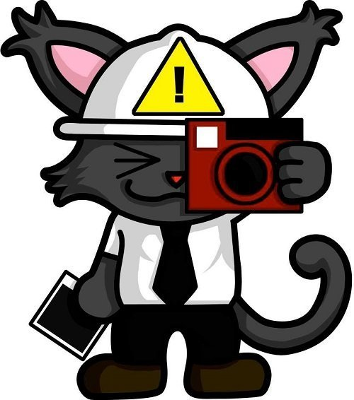 safety the cat